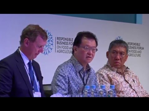 Opening discussion panel: Aligning food and agriculture policy in the ASEAN  Economic Community