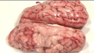 Deep-Fried Brains - How To