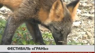 """Фестиваль """"Грань"""". Новости. GuberniaTV"""