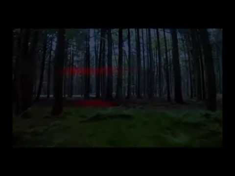 ''The Lost Woods''  Movie