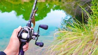 Fishing for GIANT Bass in Ultra CLEAR Water (Jon Boat Fishing)