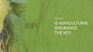 Is Agricultural Insurance the Key