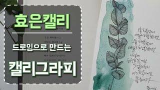 [슬기로운 캘리생활] 드로잉일러스트&펜 캘리그라피