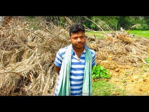 Vehement farmer men