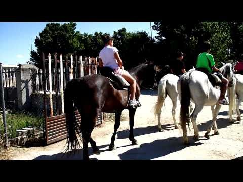 rutas a caballo mxexperience