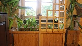 Pallet Wood Corner Trellis Planter For Indoor Winter Vegetables. Jardin D'hiver.  Jardinera Celosía