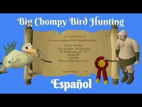 [OSRS] Big Chompy Bird Hunting Quest (Español)