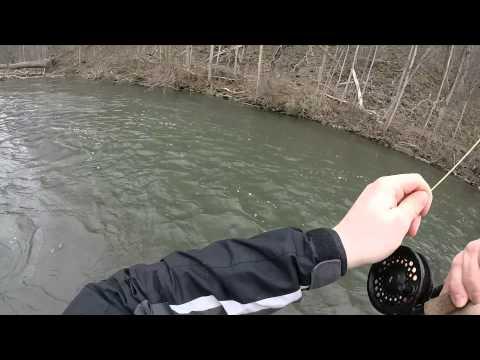 Fly Fishing Spring Creek (PA) 03/15/2014