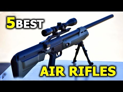 5 Best Budget Air Rifle for Umarex lovers - Best Air Rifle 2020