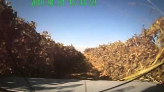 Test Drive VAZ 21063 3.2 OMG )))