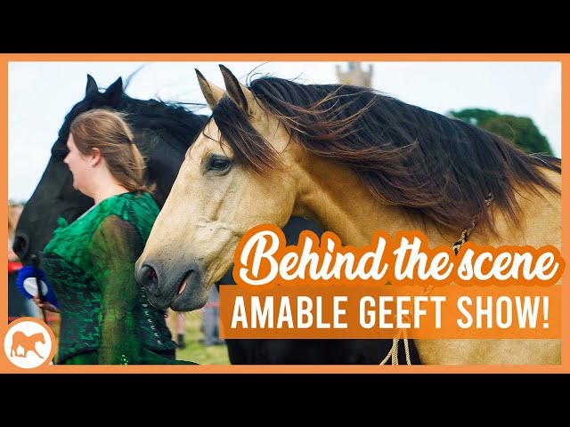 Amable geeft shows in Burg Haamstede! | Vlogstyle