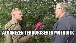 Albanezen terroriseren Moerdijk