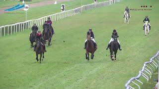 Wyścig na 1/4 mili - duże konie - HUBERTUS 2016