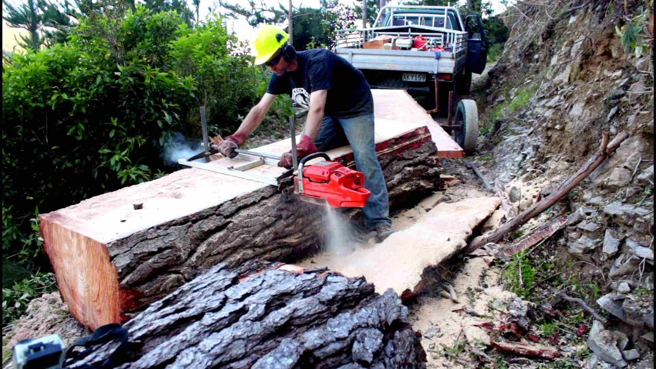 Felling A Big Pine Tree Amp Milling Slabs With A Portable