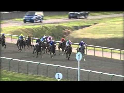 Equity Card Lingfield 18th October 2011 15:30