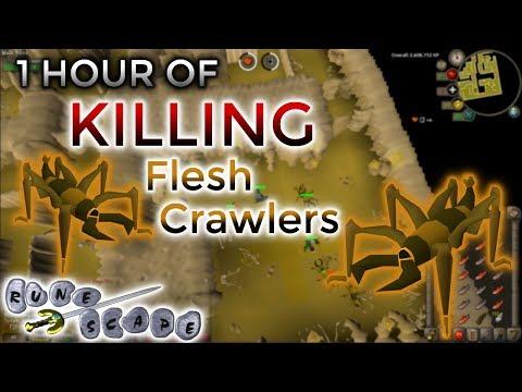 [OSRS] Killing Flesh Crawlers in F2P   The Most AFK Training Method