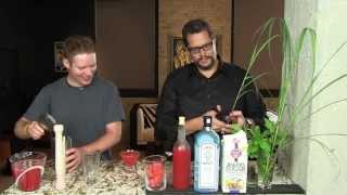 Watermelon Gin From The Cocktail Dudes