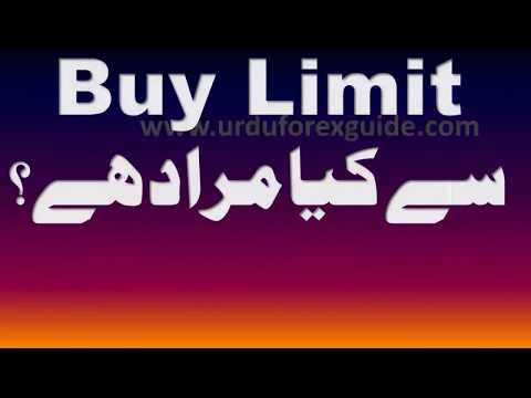 Forex trading indicators in urdu