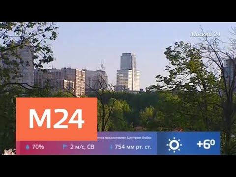 Синоптики пообещали москвичам похолодание в ночь на 11 мая - Москва 24