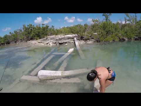 Cudjoe Key Oct  2018