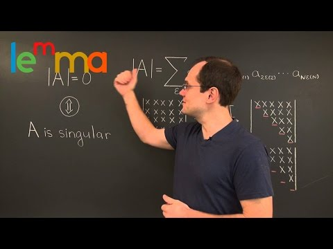 Linear Algebra 14TBD: The Determinant is Zero ⇔ Matrix Is Singular