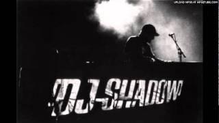 Dj Shadow feat Sergie Pizzorno-the tiger