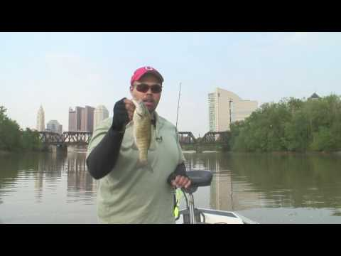 Bass fishing in downtown columbus youtube for Central ohio fishing report
