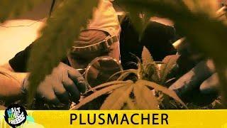 PLUSMACHER - GOLDBREULER STYLE - HALT DIE FRESSE 407 (OFFICIAL HD VERSION AGGROTV)