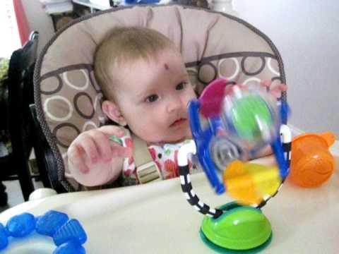 Evalyn's Highchair Toy