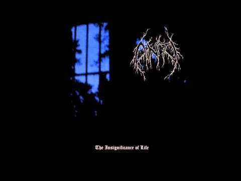 Anti - The Insignificance of Life (Full Album)