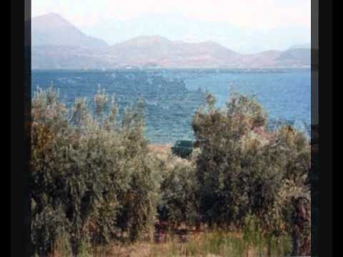 Seaside plot of land in Glyfa, Fthiotida (Greece)