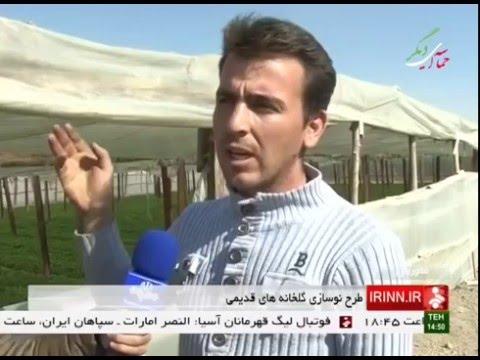 Iran Falavarjan county, Renewing old Greenhouses نوسازي گلخانه هاي قديمي شهرستان فلاورجان ايران