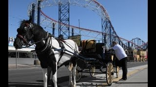 Horse Drawn Carriage Ride along the Golden Mile Blackpool