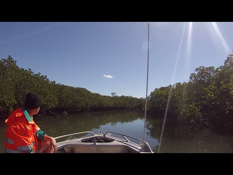 Awesome Camping Trip At Kauri Creek Using A GoPro Hero 3 White