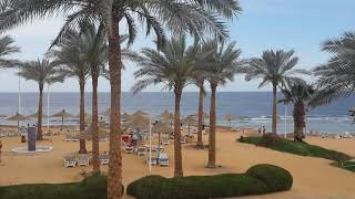 Египет территория отеля Queen Sharm Resort Egypt Beach Hotel Queen Sharm Resort