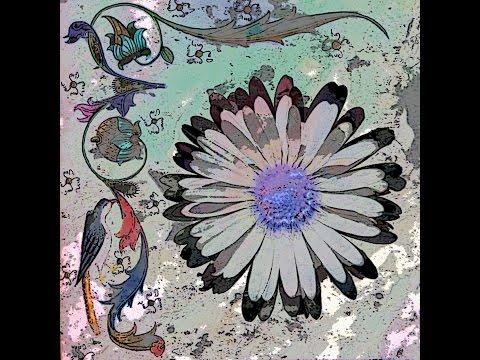 Tino Tranquilo - Blossom of Decision