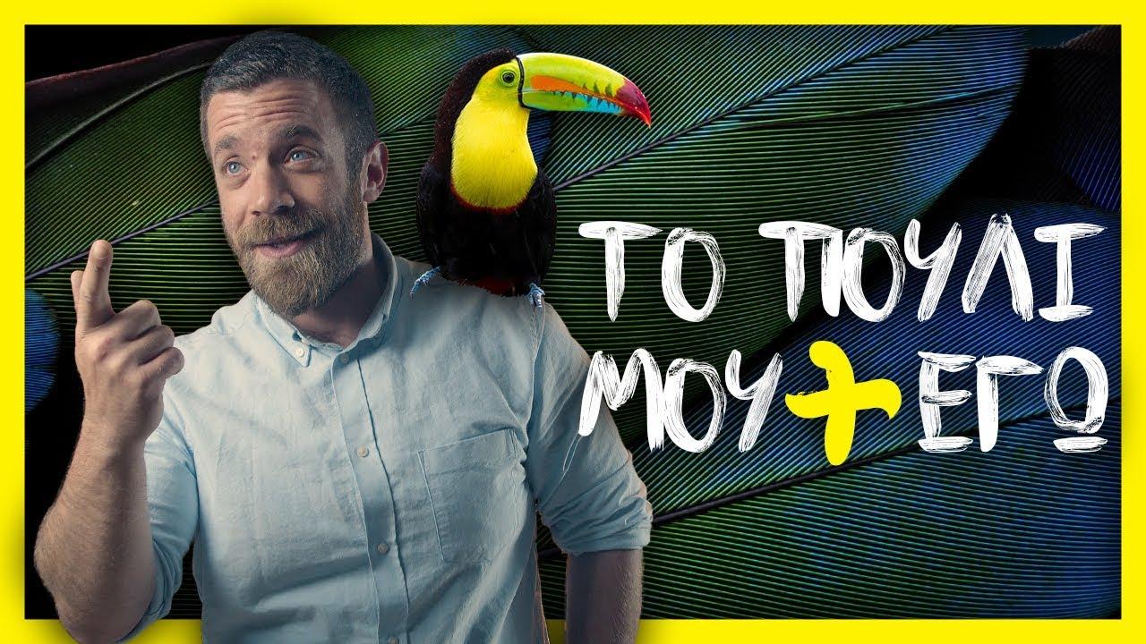 Τέρας πουλί σεξ βίντεο