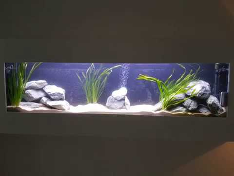 wand aquarium zelfbouw met malawi vissen youtube. Black Bedroom Furniture Sets. Home Design Ideas