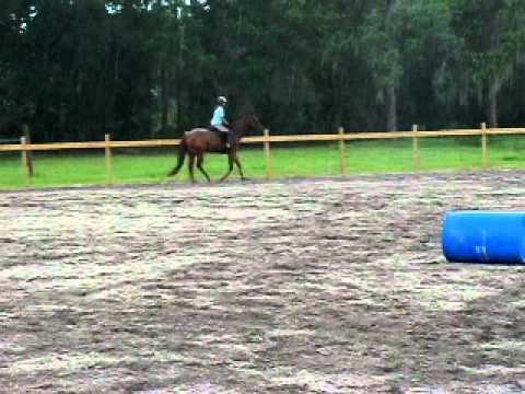Image of Lark first jumping lesson