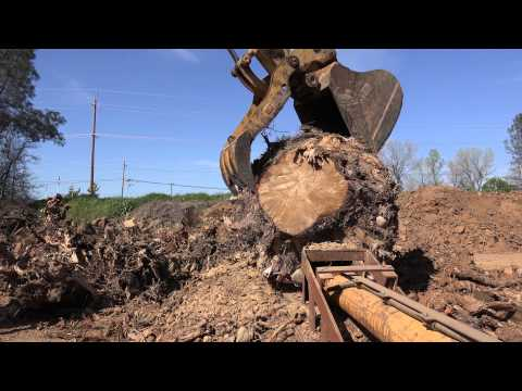Stump Splitter
