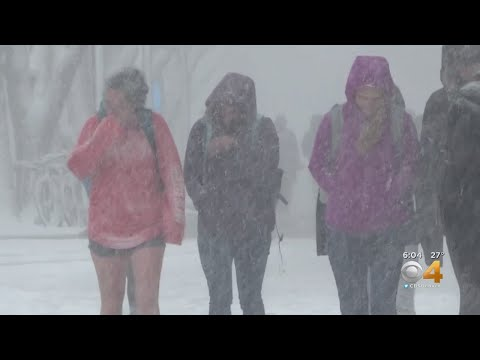 Some CSU Students Caught By Surprise With Spring Blizzard