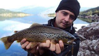 Принадність риболовлі в озерної форелі