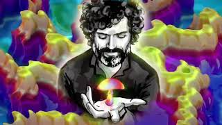 Terence McKenna - The History Of Shamanism