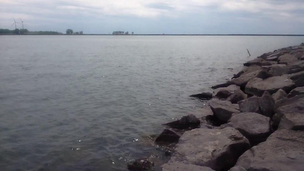 Perch killer fishing lake erie buffalo new york youtube for Fishing in buffalo ny