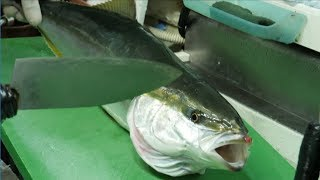 [4K]방어 회뜨기_Yellowtail Cutting, ブリ, buri_shashimi_Japanese food_Korean style sashimi