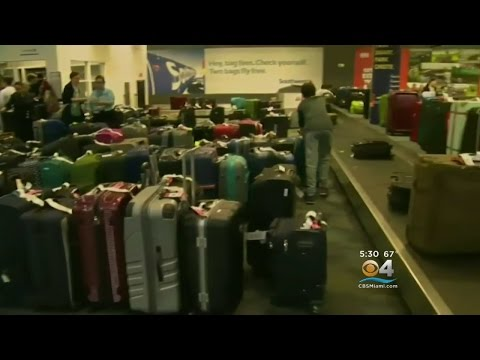 Travelers Caught In Chaos Of Fort Lauderdale Shooting Claim Luggage, Lost Items