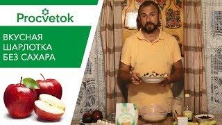 Шарлотка с яблоками БЕЗ САХАРА – простой и полезный рецепт яблочного пирога!