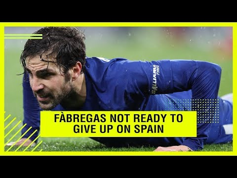 FÀBREGAS NOT READY TO GIVE UP ON SPAIN