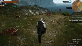 The Witcher 3 Wild Hunt Найти ловца жемчуга и поговорить с ним