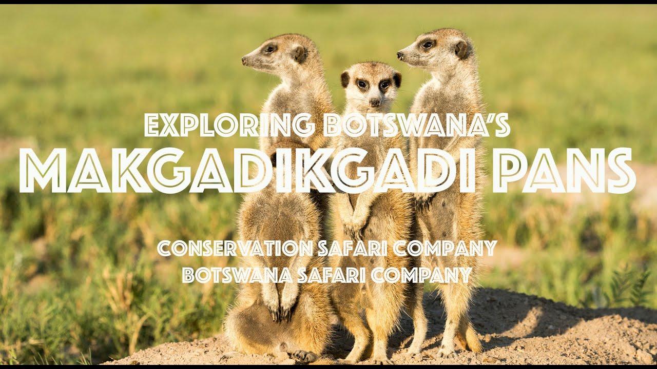 Exploring Botswana's Makgadikgadi Pans